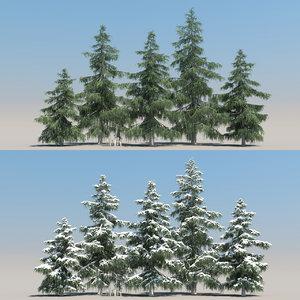 5 cedar tree 3D