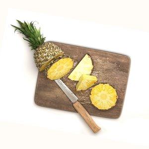 3D cutting board knife pineapple model