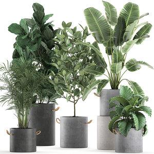 3D decorative plants interior flowerpots
