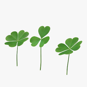 green clover plant set 3D