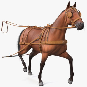 horse drawn leather single 3D model