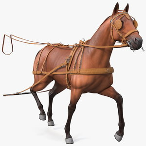 3D model horse drawn leather harness