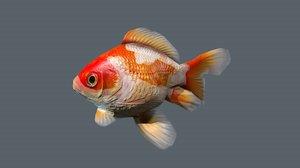 goldfish animation 3D model