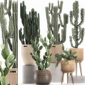 decorative cactus baskets interior 3D model