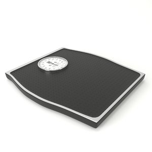 3D bathroom scale modeled model