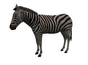 3D zebra games model