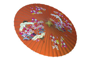 japanese umbrella model