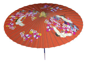 japanese umbrella model