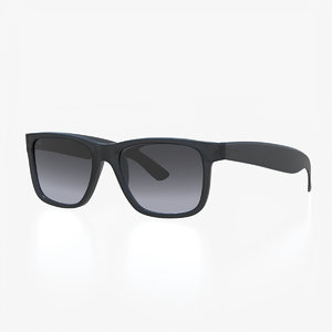 classic resin sunglasses black 3D