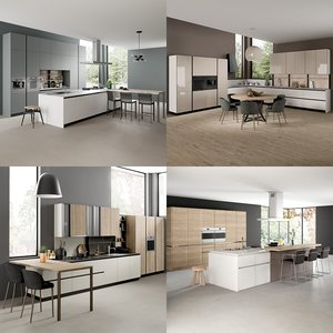 realistic kitchen 1 collections 3D model
