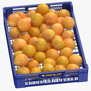 postharvest tray grapefruits 3D model