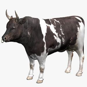 bull animal beast 3D model