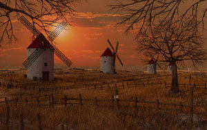meadow sunset windmill 3D model