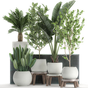 3D decorative plants interior white