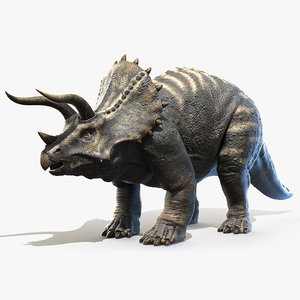 3D triceratops horns