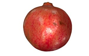 3D pomegranate fruits