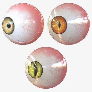 3D real eyes realistic model