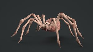 spider rigged 3D model