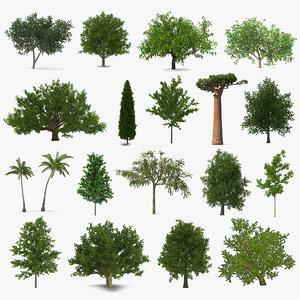 3D summer trees 7