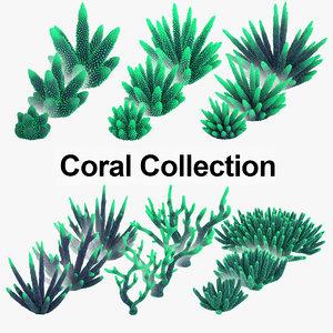 3D model corals real
