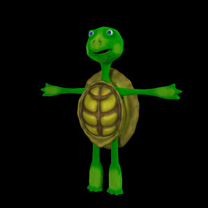 3D model turtle animation