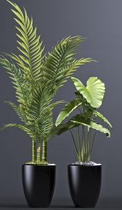 3D plants 102 planters model