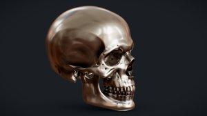 3D perfect skull model