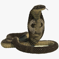 Indian Cobra Rigged Animated