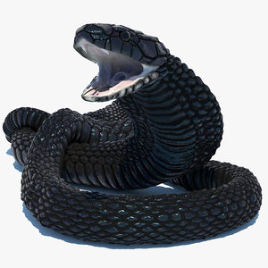 3D model rigged egyptian cobra snake