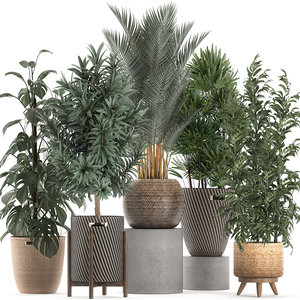 3D decorative plants interior baskets
