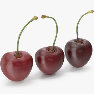 3D cherries model