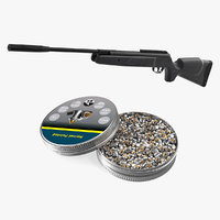 Air Rifle with Hornet Pointed Airgun Pellets Collection
