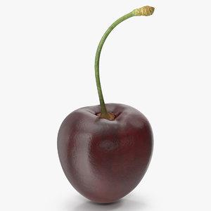 cherry 3 3D model