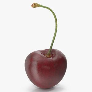 cherry 2 3D model