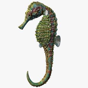 3D seahorse sea horse