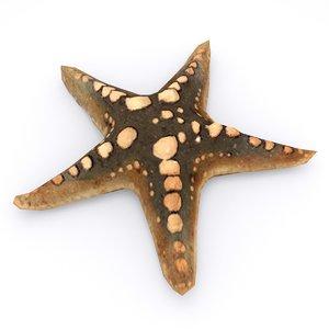 starfish type 01 3D model