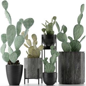 3D plants 17 model