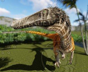 dinosaur raptor velociraptor model