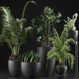 plants 24 3D model