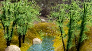 3D model trees pond