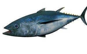 tuna fish animation 3D model