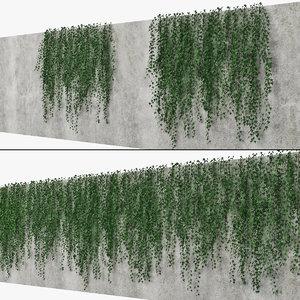 3D ivy wall model