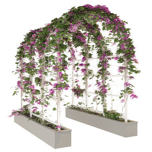 garden arch model