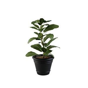 plant design modeled model