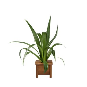 3D plant design modeled
