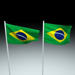 brazil flag model