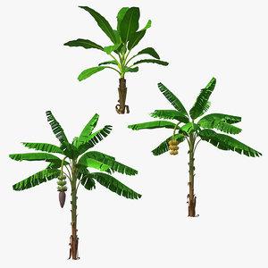banana trees 3D