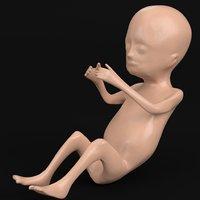 Stylized human fetus