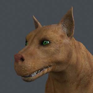 rigged dog walking place 3D model