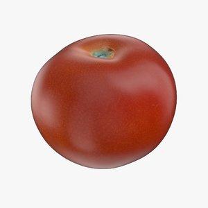 tomato pbr 3D model